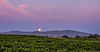 BW105.  Early moonrise over the  Berenda vineyard.