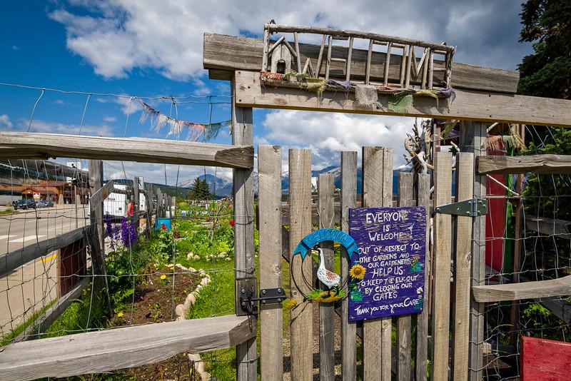 Community Garden   Jasper, Alberta Canada