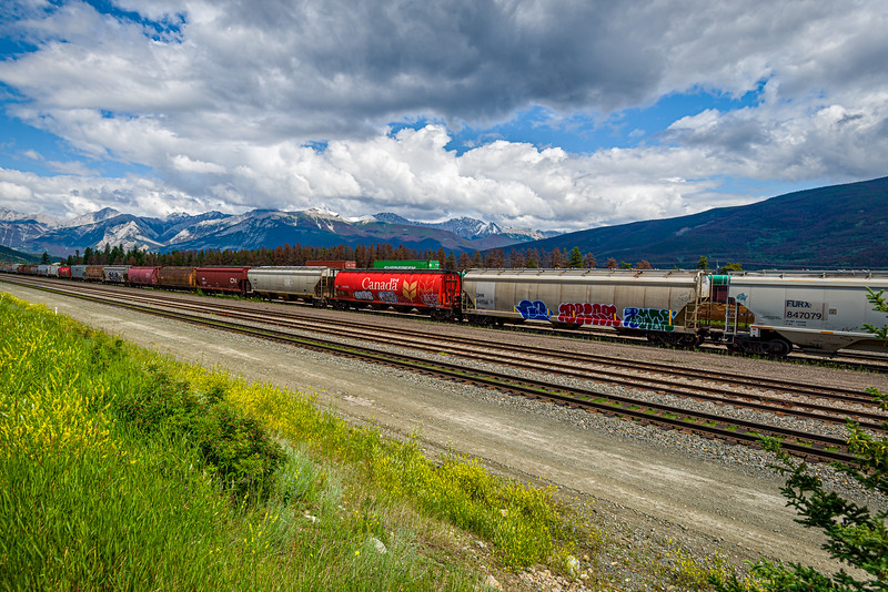 Train yard | Jasper, Alberta Canada