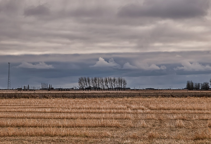 Snow clouds over field