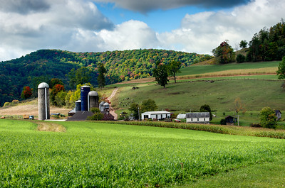 A FARM IN ACCIDENT, MARYLAND
