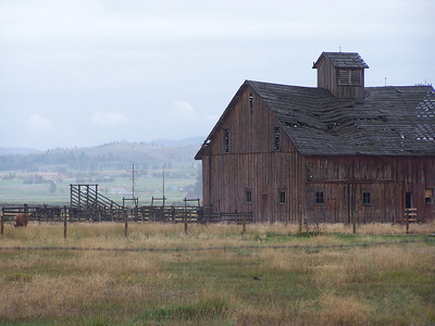 Old Barn on a raining Labor Day, Corvalis, Montana. 9.08