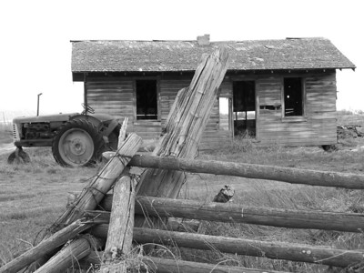 Old Idaho homestead and tractor, bw