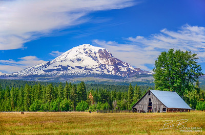 The Great American Barn