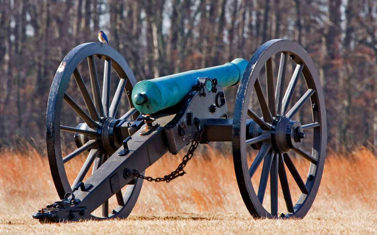 Bluebird Cannoneer with Confederate 6-pounder