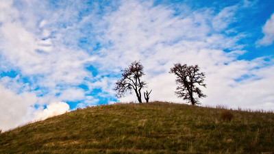 Woodside Hills