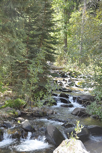 Mountain stream at Bayhorse, Idaho. Land of the Yankee Fork. 9.09