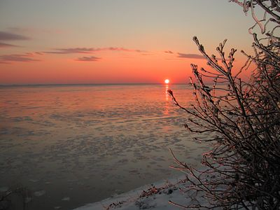 January ice storm