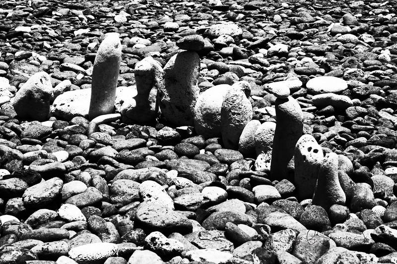 piedras bn