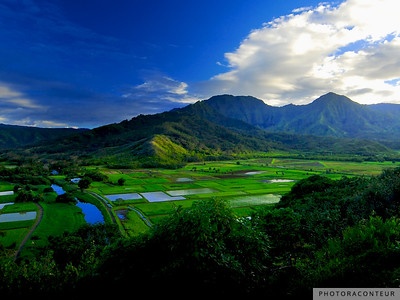 """Hanalei River Valley, Kauai"" ~ The beautiful Hanalei River Valley on Kauai is home to a wildlife refuge as well as these lush green taro fields that are irrigated by majestic waterfalls in the mountains above."