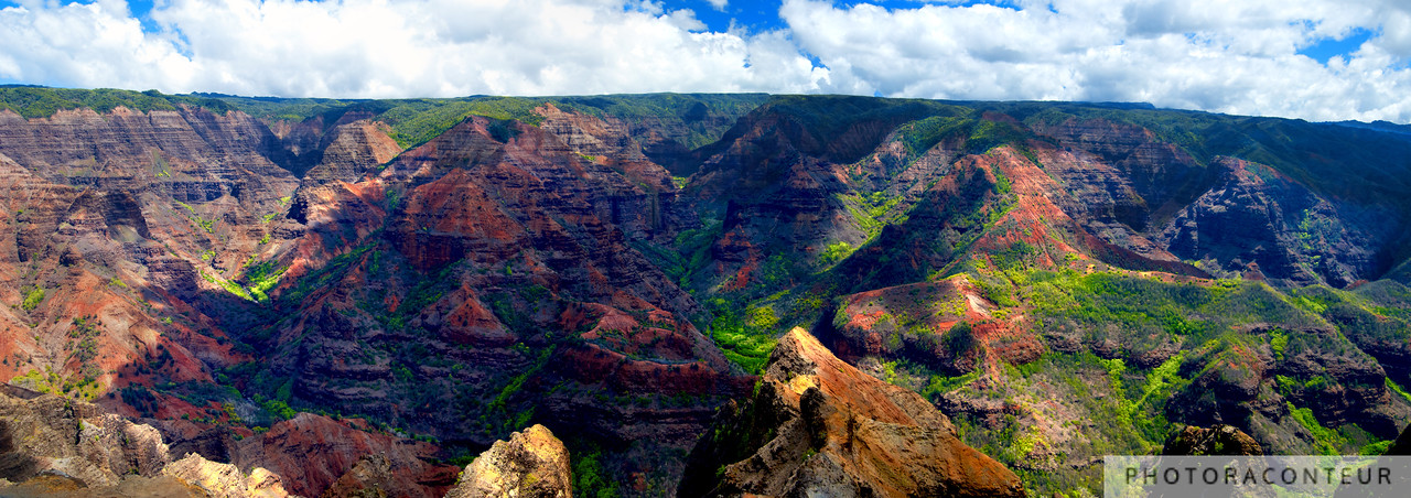 """Waimea Canyon Panoramic"" ~ Countless shades of green and brown reveal themselves in this panoramic view of Waimea Canyon on Kauai, also known as the ""Grand Canyon of the Pacific"".  <br /> <br /> Multiple photos have been stitched together to simulate the aspect ratio of panoramic film cameras such as the Linhof Technorama 617s."