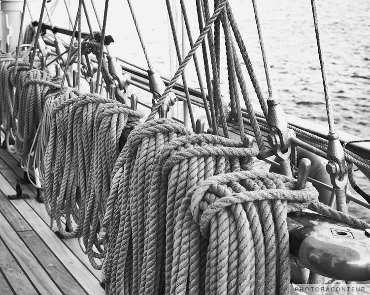 Sagres Ropes II