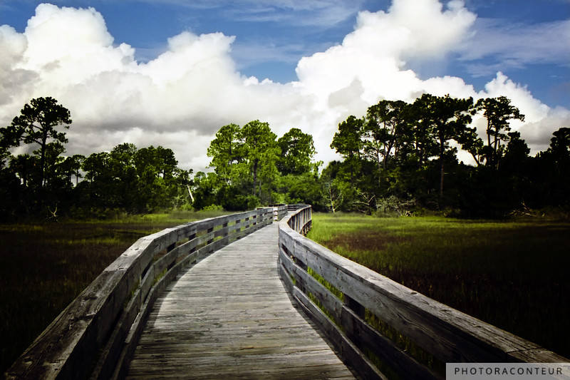 """Kiawah Marsh"" ~ A path meanders through the marsh along Kiawah Island in South Carolina before reaching a secret paradise."