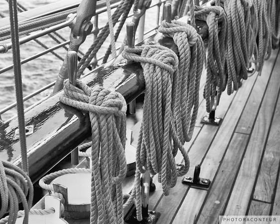 Sagres Ropes I