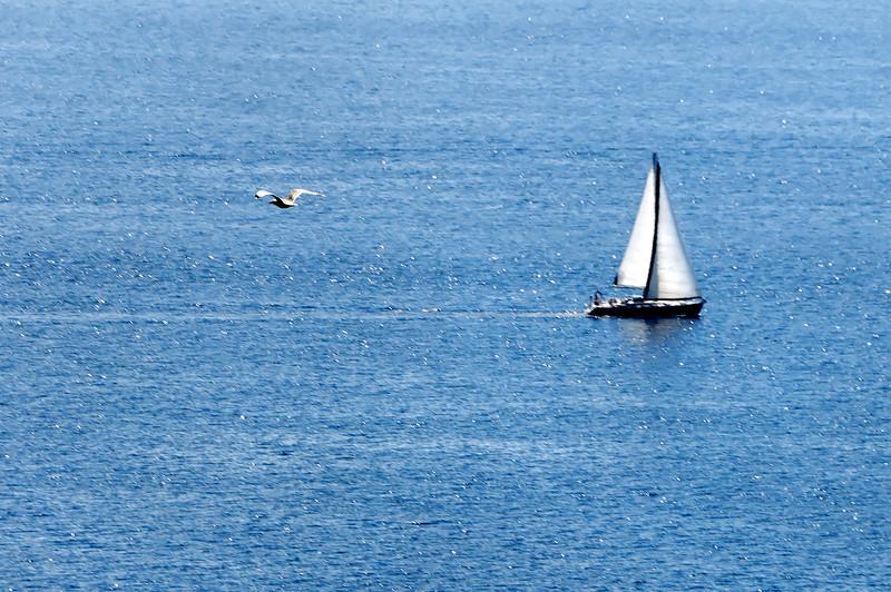 Island of Murter. Croatia.
