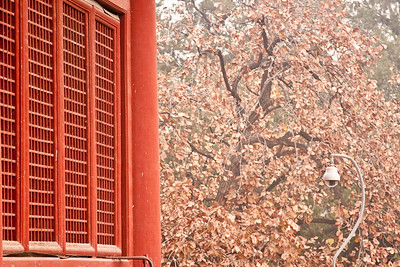 Window and leaves, Ming Tombs