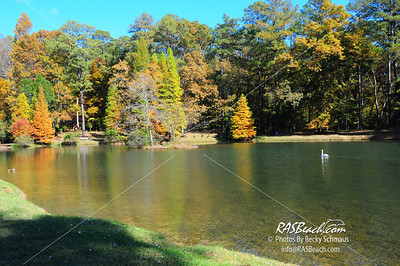 Swan Lake, Berry College, Mount Berry, GA_014