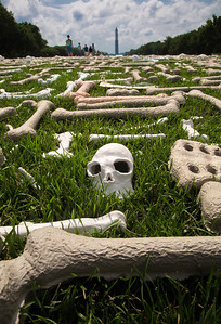 One Million Bones Exhibit on National Mall to Raise Awareness of Genocide - June 9, 2013
