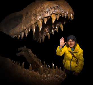 Smithsonian National Museum of Natural History - T-Rex (11-16-14)