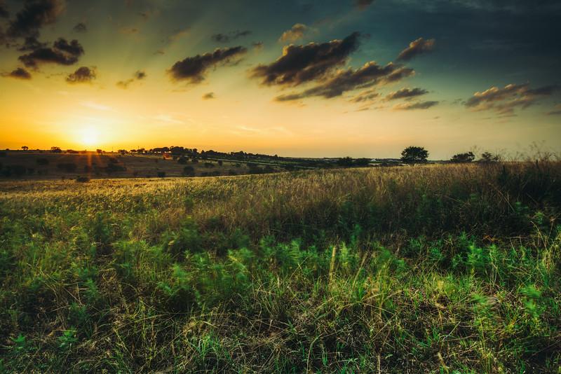 Rural Texas Summer
