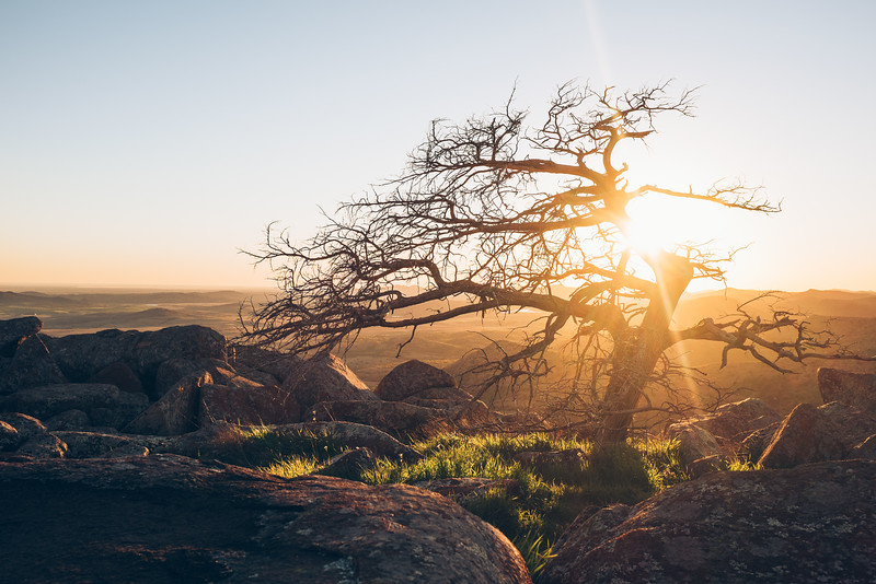 Landscapes:  Lonely At The Top