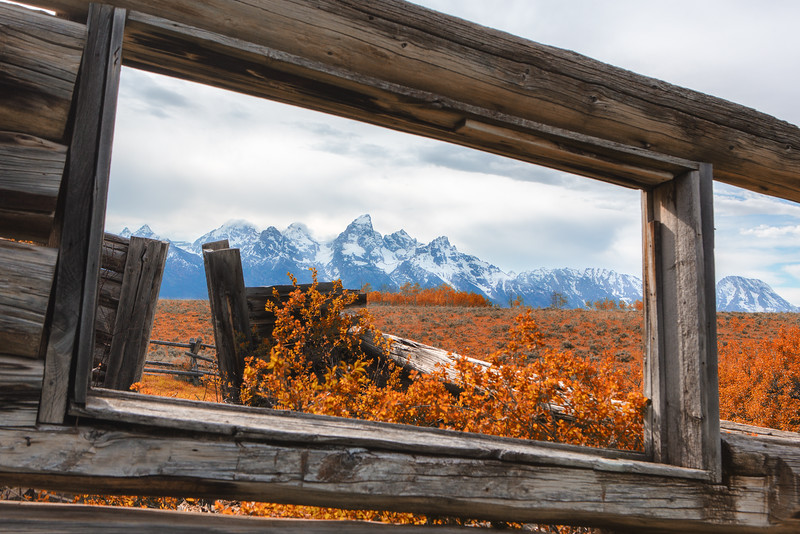 Landscapes:  A Room With A View