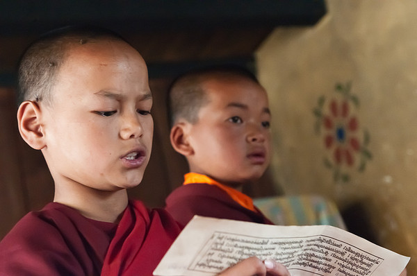 #Bhu 113 Young Monks, Temple of the Divine Mad Monk, Bhutan