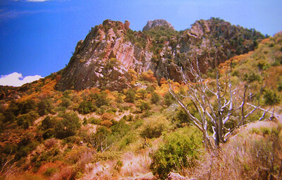 015 big bend, TX, Laguna Meadow trail, chisos mts , apr 19, 1997d-1