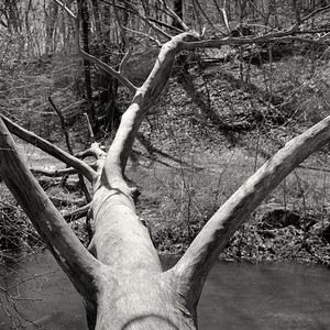 log+river-t3052