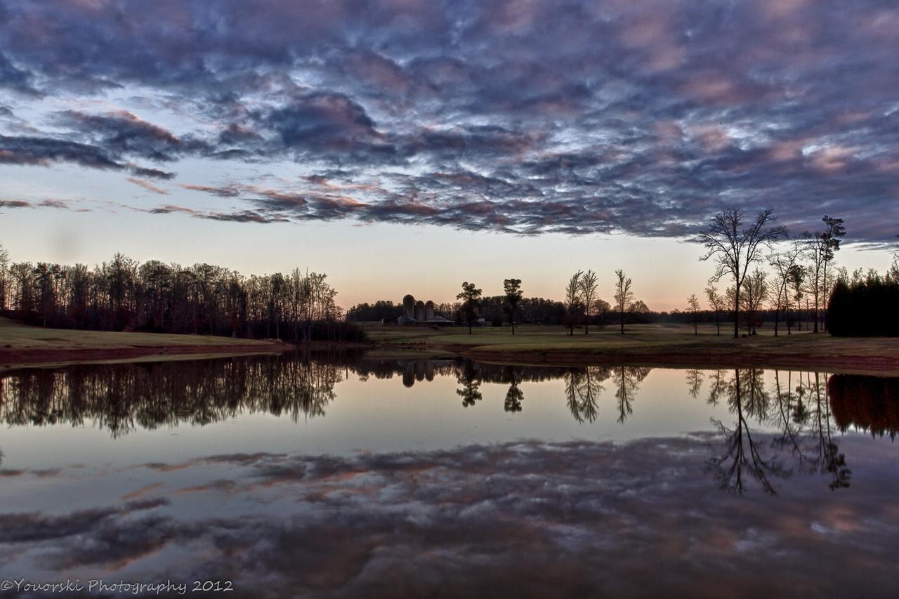Morgan Diary pond.