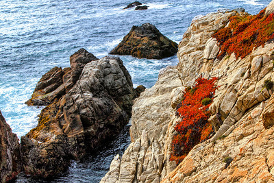 Point Lobos Scenery