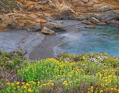 Small cove at Pt. Lobos