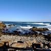 Monterey Bay in California 5