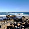 Monterey Bay in California 4