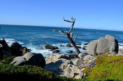 Big Sur, Monterey, Carmel, Pebble Beach