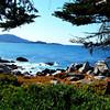Monterey Bay in California 9
