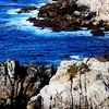Near Monterey California 4