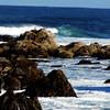 Near Monterey California 5