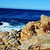Monterey Bay in California 6