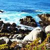 Monterey Bay in California 7