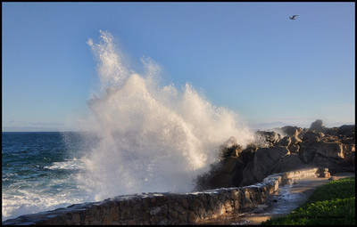 Big Sur - Pacific Grove, Ca. 12-2012