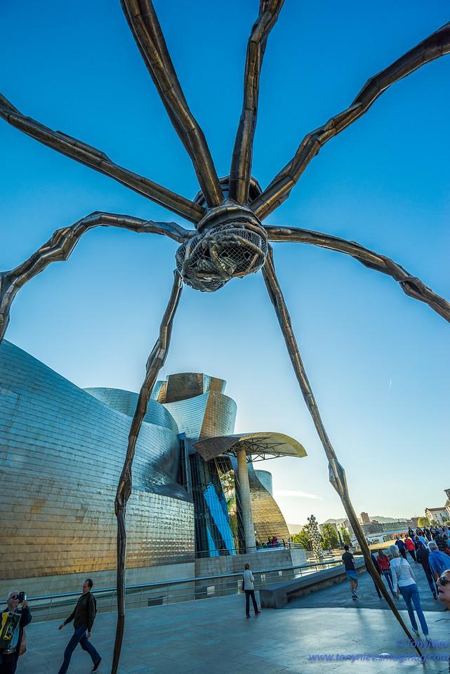 IMAGE: https://photos.smugmug.com/Photography/Bilbao-Guggenheim-Museum-Leica-m10/i-4F7SJwB/0/f0622504/X2/DSC07798-X2.jpg