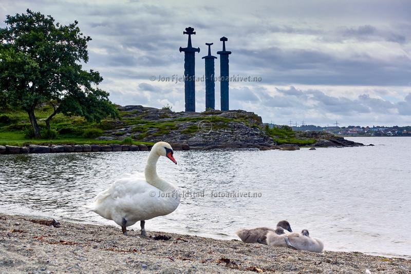Sverd i fjell - Hafrsfjord - Stavanger kommune