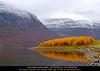 Langneset - Kåfjord - Troms