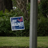 Political sign in neighbor's yard across street from front of my house, shot from by driveway.  Full frame shot with no post-processing.  ISO800, 600mm.