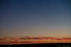 Sunset Migration