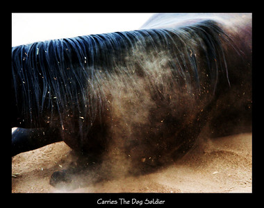 """Carries The Dog Soldier""  Limited Edition print 2006 to purchase email photography@Indianstunts.com"