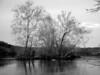 Island, Potomac River, Great Falls, MD
