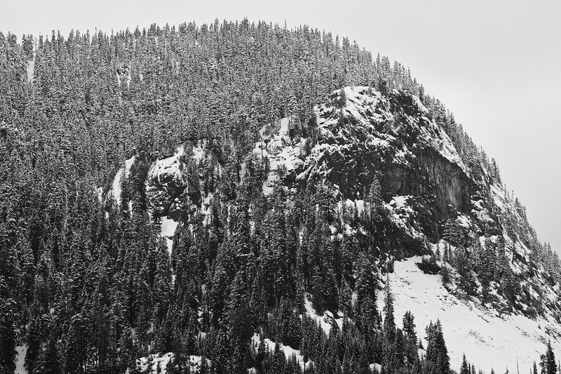 Snowy Mountain; Snoqualmie Pass, WA
