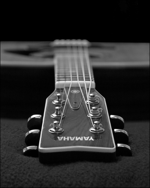 B/W Guitar